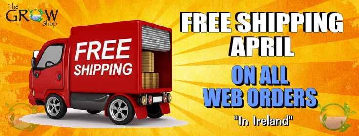 Free Shipping Banner April