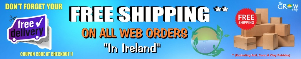 Free Shipping Banner Final 2