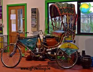 Rikshaw-Large